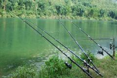 雷阵雨可以钓鱼吗?雷阵雨天气适合钓鱼吗?[多图]