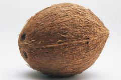 椰子是什么季节的水果?椰子几月份成熟?[多图]
