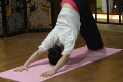 练瑜伽可以增高吗?吃增高药可以增高吗?[图]