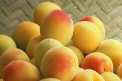 杏子是什么味道?杏子好吃吗?[多图]
