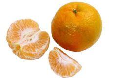 橘络是什么?橘络的功效和作用[多图]