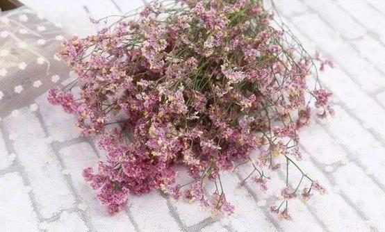如何让鲜花长开不败 教你科学延长鲜花的保鲜期