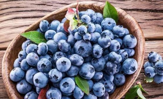 蓝莓有什么功效与作用?吃蓝莓需要注意什么?