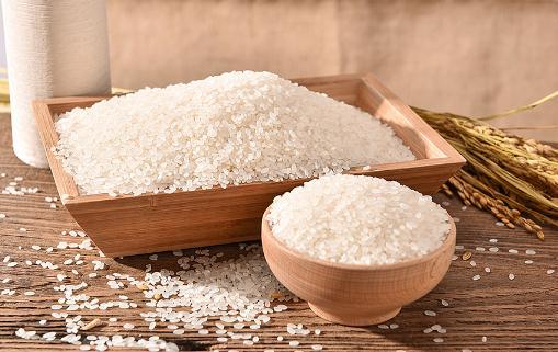 大米长了黑色的虫子怎么去除 怎么让大米不长虫子