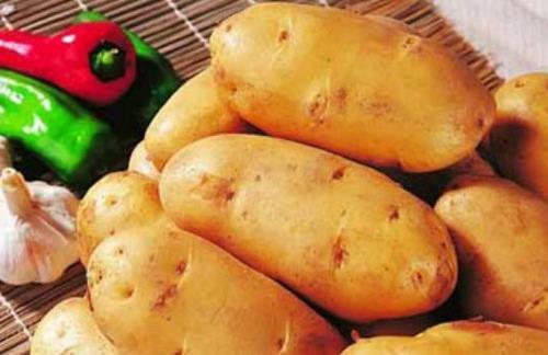 吃土豆可以减肥吗?吃土豆有什么好处?